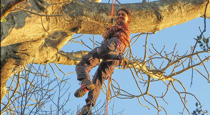 Nisa Karimi in tree