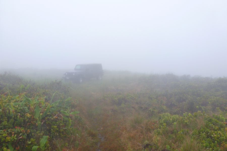Jeep in the mist